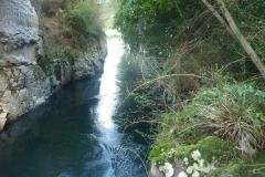 Río CAUNAHUE
